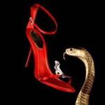 Египетская кобра, охраняющая босоножки Rene Caovilla,MIGnews.com