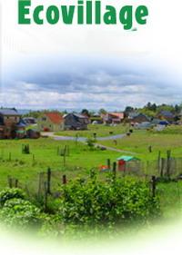 В Великобритании через три года появится первая в стране эко-деревня, dvpt.ru