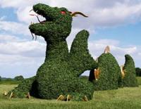 Куст в виде дракона за $35 тысяч, фото newsland.ru