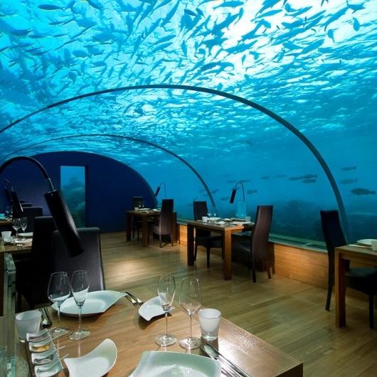На Мальдивах построили дискотеку в подводных глубинах Индийского океана