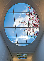 Эти подвесные потолки заменяют собой небо