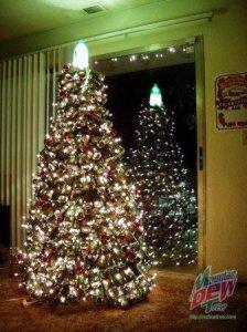 Топ-10 самых необыкновенных новогодних елок