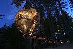Рестораны на деревьях приблизят вас к природе