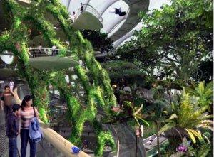 """Отель """"Летучий корабль"""" с уникальным ботаническим садом"""