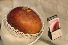 Пара «солнечных яиц» стоит в Японии $2.500