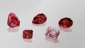 Самые роскошные бриллианты 2015 года будут проданы на аукционе (видео)