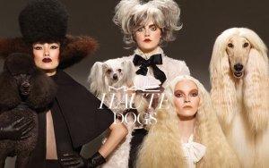 Эксклюзивная коллекция косметики бренда MAC, посвященная собакам