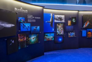 Часы для дайвинга от Blancpain, посвящённые защите Мирового океана