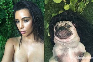 Шуточные эротические фото Ким Кардашьян с участием популярного мопса