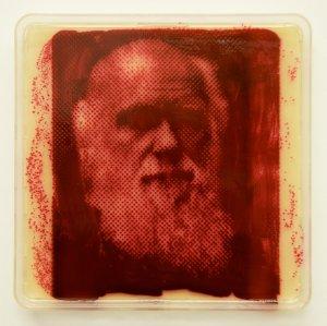 «Выращенная» книга Чарльза Дарвина «Происхождение видов»