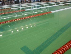 Первые места на лосанджелевском турнире были заняты российскими пловцами