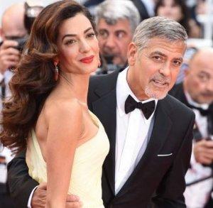 В звездном семействе Клуни ожидается появление на свет двойни