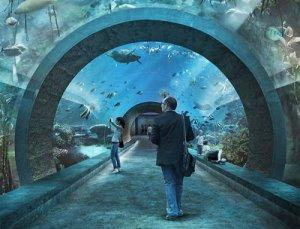 День Нептуна в новом аквариуме Базеля