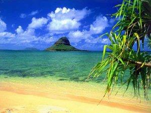 Марк Цукерберг будет строить роскошную виллу на Гавайских островах