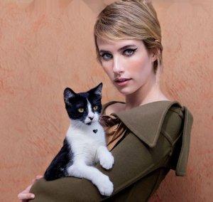 В  новом выпуске журнала Flaunt раскроют тему кошек и звезд