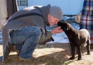 Кейт и Уильям подарят принцу Гарри на Рождество щенка